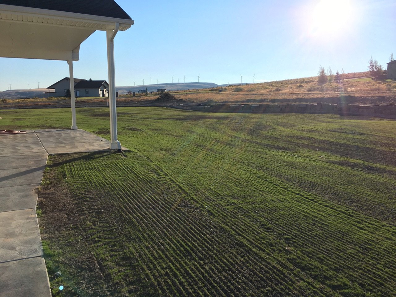 Reseeded Lawn - Grass Reseeding Idaho Falls