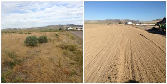 Before and After Landscape Prep - Dirt Prep Idaho Falls