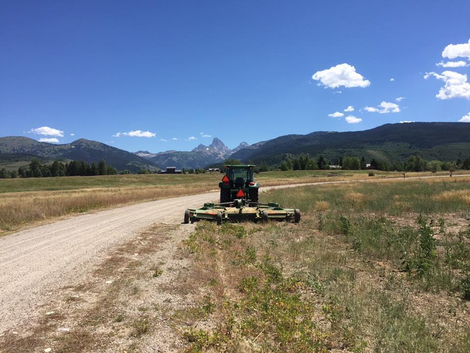 Tractor Mowing Field - Field Mowing Idaho Falls